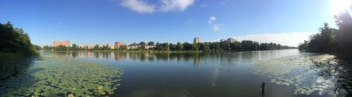 Från andra sidan sjön