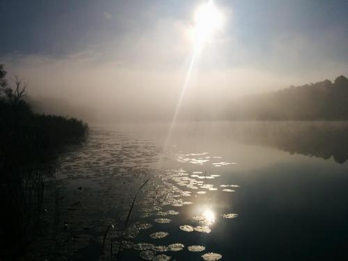 Sickla Sjön i motljus